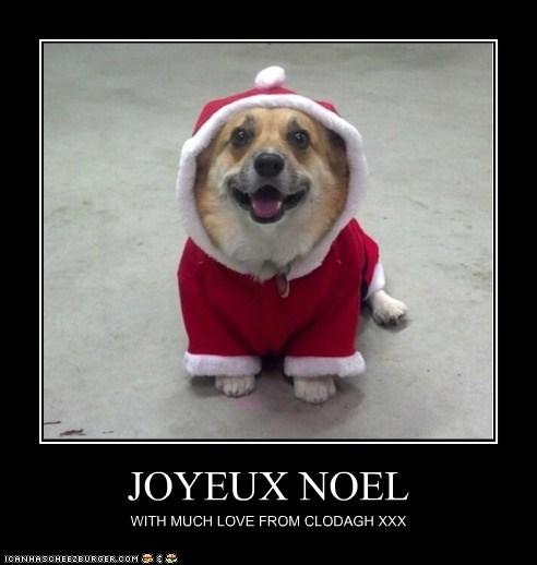 JOYEUX NOEL WITH MUCH LOVE FROM CLODAGH XXX