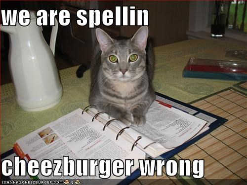Cheezburger Image 691806464