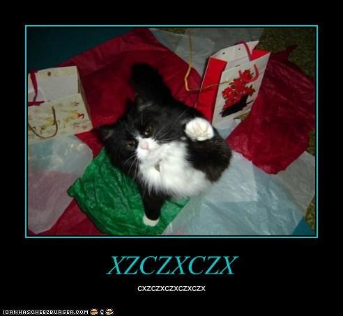 Cheezburger Image 6918452992