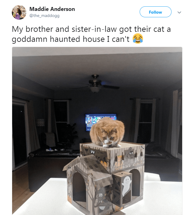 halloween haunted house scratcher Cats cardboard - 6918917