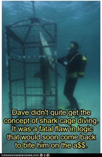 flaw,diving,shark cage,sharks,close,logic