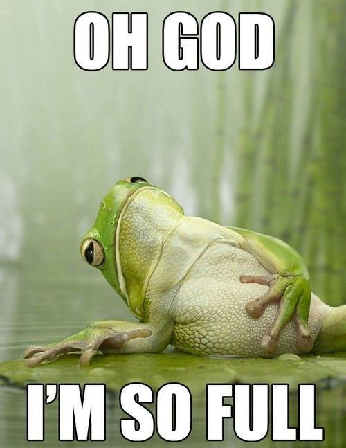 cute full frog