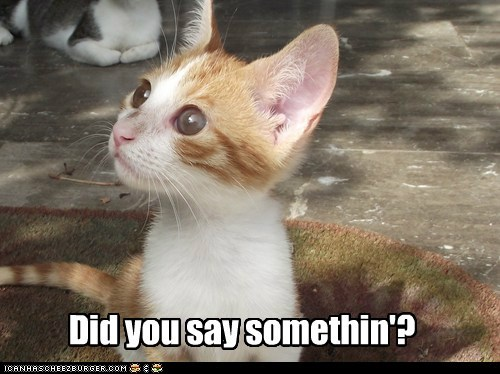 Did you say somethin'?