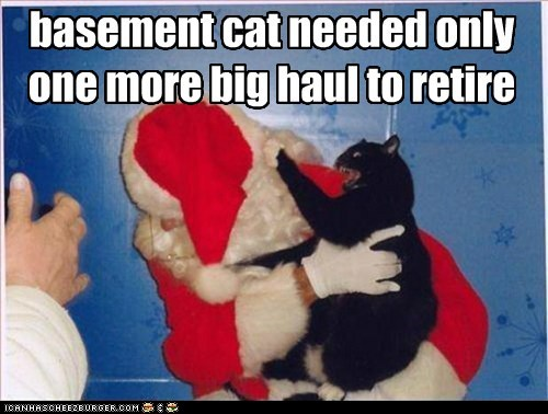 basement cat needed only one more big haul to retire