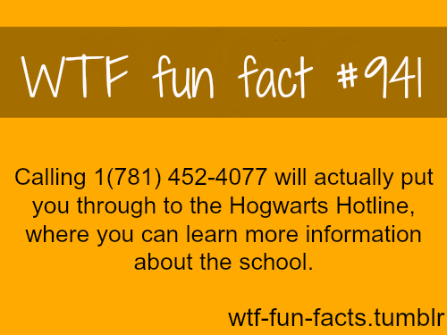 school Fun Fact Hogwarts - 6920762624