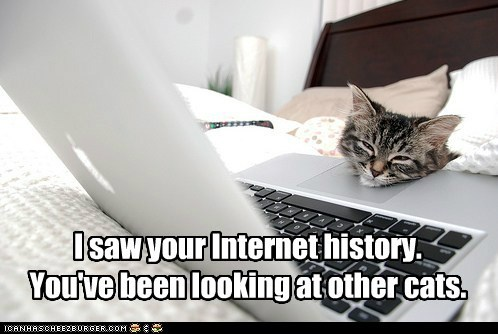 I saw your Internet history. You've been looking at other cats.