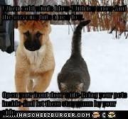 Cheezburger Image 6920960768