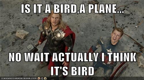 Thor plane bird - 6922499328