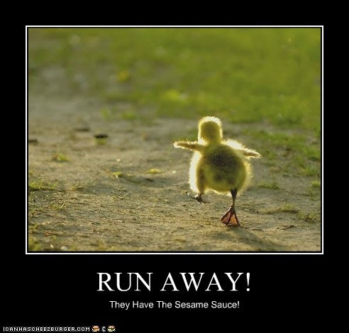 run away,run,ducklings,chinese food,sesame,sauce
