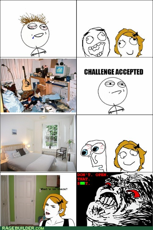 cleaning Challenge Accepted housecleaning true story - 6922574592