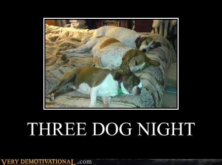 dogs,wtf,sleepy time,3 dog night