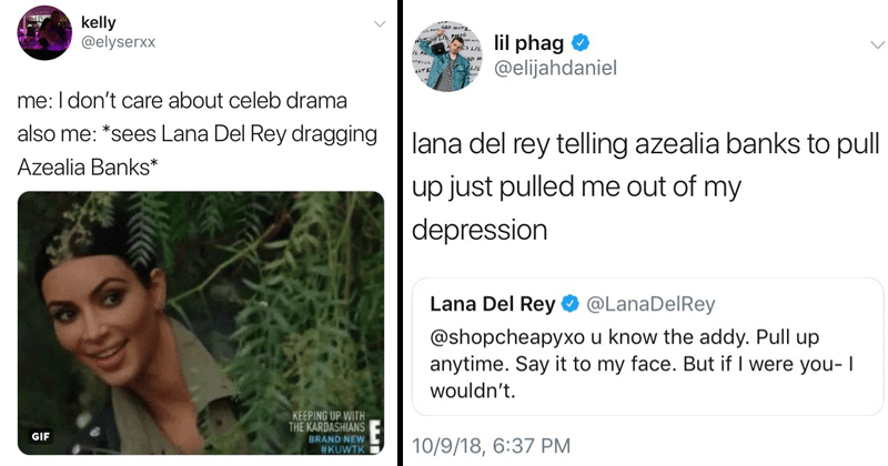 Funny tweets about Lana Del Rey and Azealia Banks feud.