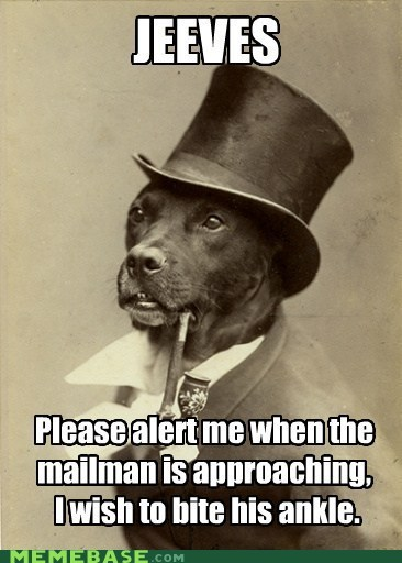 dogs,ankle biting,old money dog,mailmen