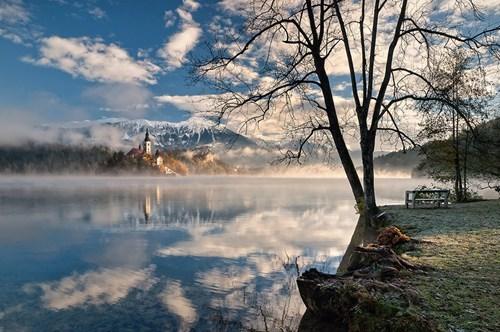 castle,Slovenia,park