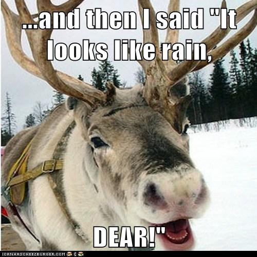 reindeer puns laughing looks like rain
