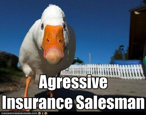 Agressive Insurance Salesman