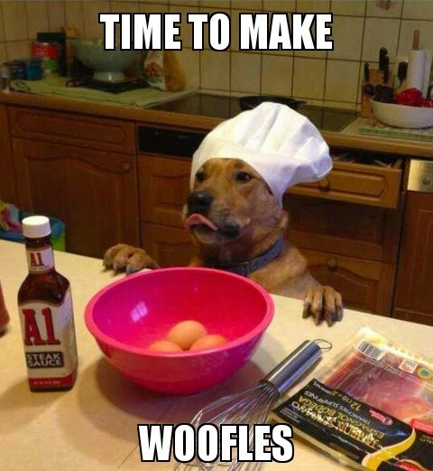 waffle chef dog cooking baking is it a meme puns chefs woof dogs what breed - 6925717504