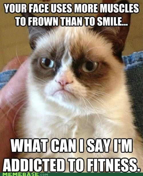tardar sauce Grumpy Cat working out smiling frowning muscles tard