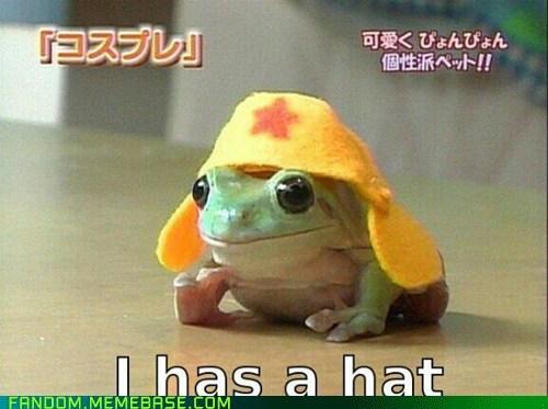 keroro sgt-frog cute manga frog - 6926386944