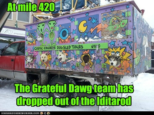 dogs,the grateful dead,420,truck,what breed,iditarod