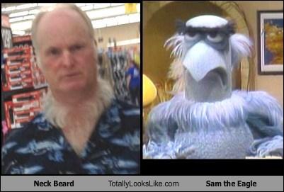 Sam the Eagle gross TLL neck beard funny - 6926604288