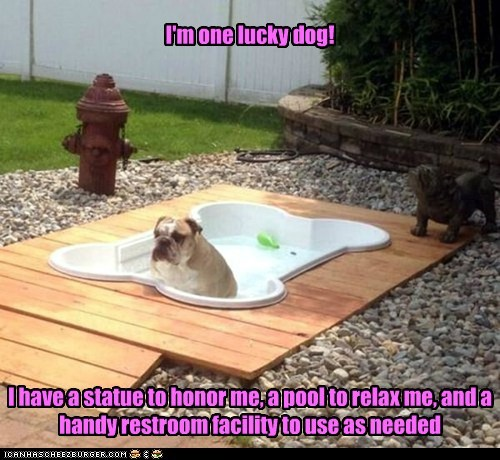 dogs hot tub bulldog statue jacuzzi fire hydrant relax - 6926609152