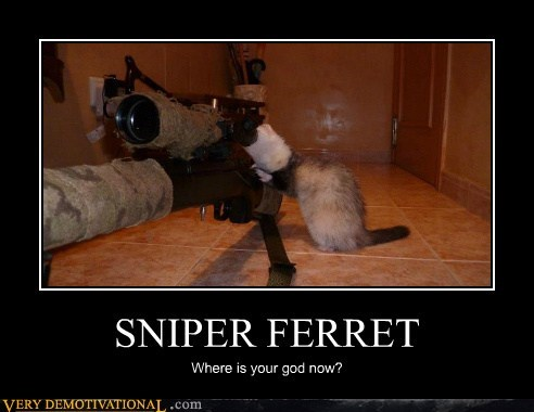 SNIPER FERRET Where is your god now?