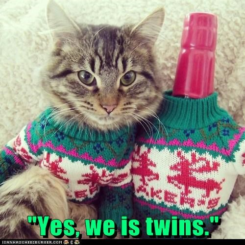 alcohol,whiskey,cold,captions,sweater,winter,twins,Cats