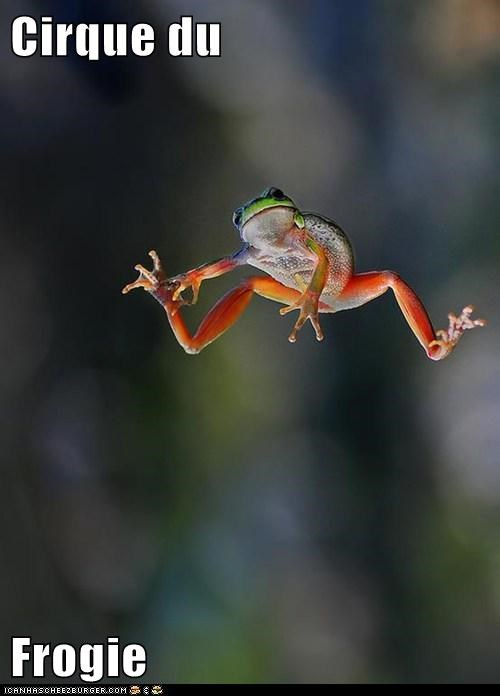 Cirque du Soleil froggy acrobatics circus jumping frogs - 6928833024