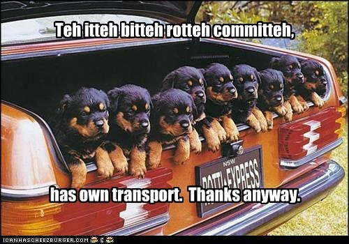 Teh itteh bitteh rotteh committeh, has own transport. Thanks anyway.