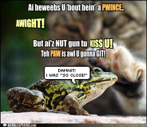 petting kissing close the frog prince Cats frogs - 6928891904