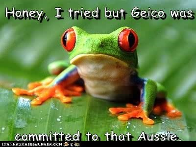 Honey, I tried but Geico was committed to that Aussie.