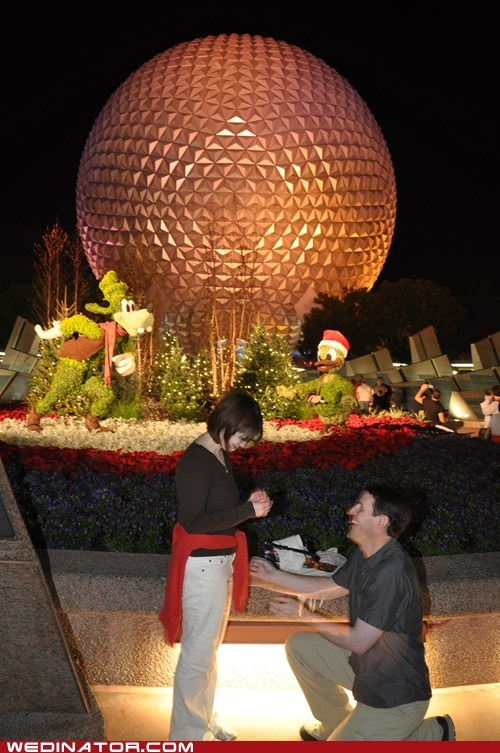 disney parks,disney,proposal,epcot center