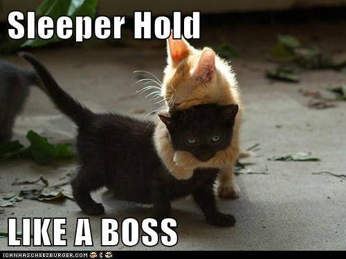 Sleeper Hold  LIKE A BOSS