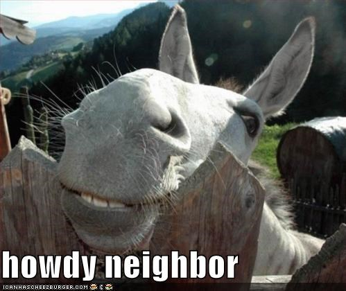 Image result for howdy neighbor meme