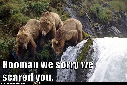 hurt,bears,hooman,scared,looking down,waterfall,sorry