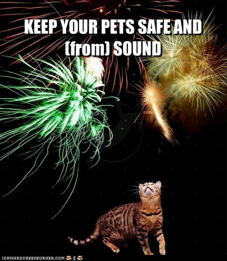 KEEP YOUR PETS SAFE AND (from) SOUND