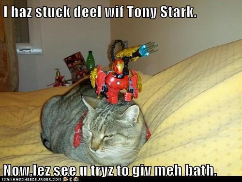 I haz stuck deel wif Tony Stark. Now,lez see u tryz to giv meh bath.