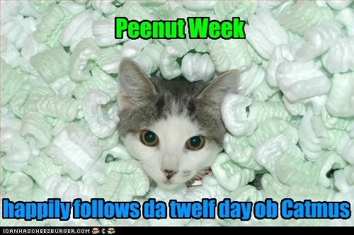 Peenut Week happily follows da twelf day ob Catmus