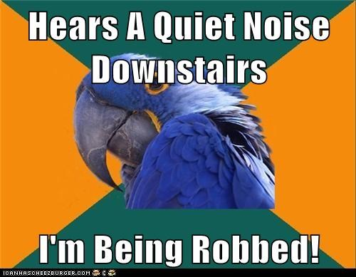 Hears A Quiet Noise Downstairs  I'm Being Robbed!