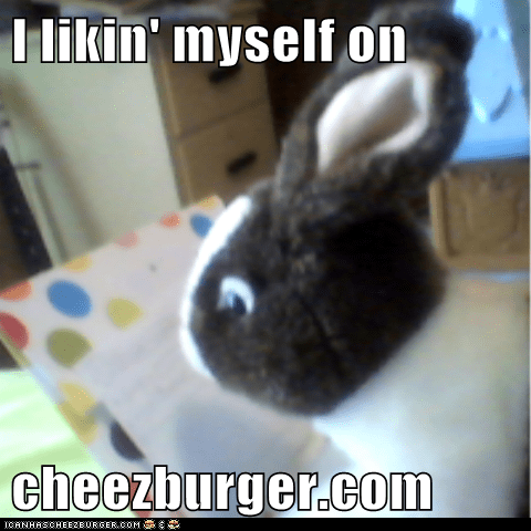 Cheezburger Image 6931183104