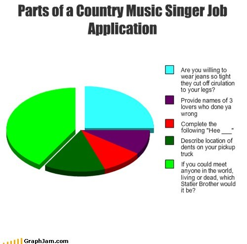 Parts of a Country Music Singer Job Application