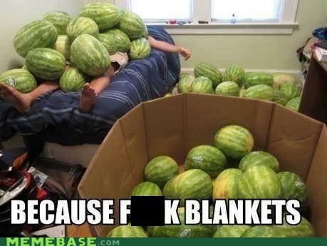 wtf blankets melons - 6931590656