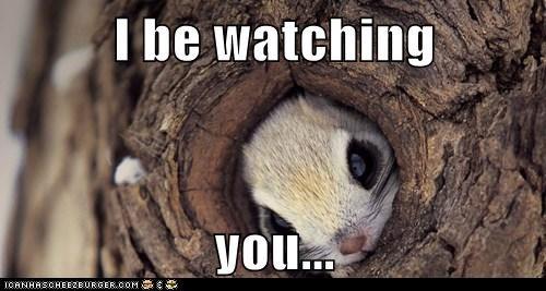 bunnies peeking watching you hole tree - 6931801856