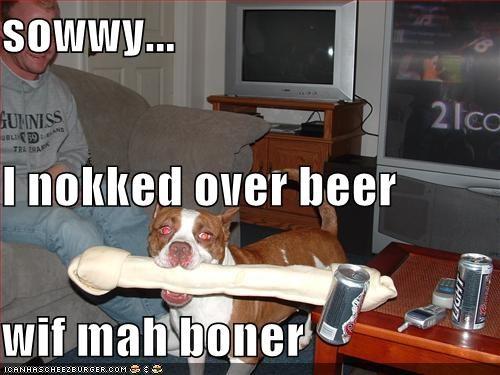 Cheezburger Image 693195520