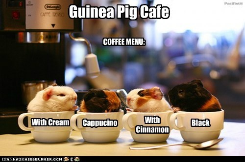 Guinea Pig Cafe COFFEE MENU: With Cream Cappucino With Cinnamon Black