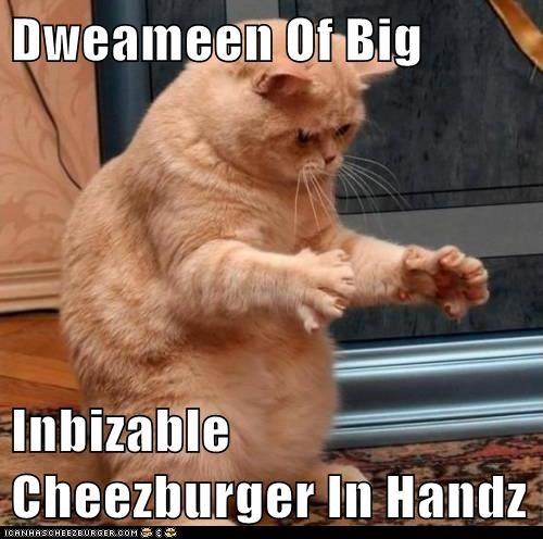 Cheezburger Image 6932489984