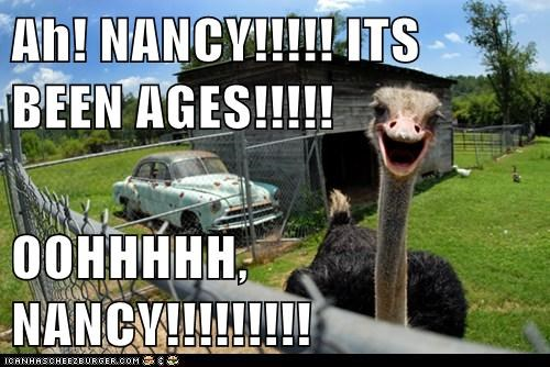 Ah! NANCY!!!!! ITS BEEN AGES!!!!!  OOHHHHH, NANCY!!!!!!!!!