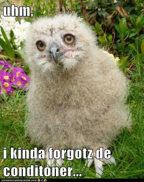 birds Fluffy fuzzy conditioner forgot - 6933190656