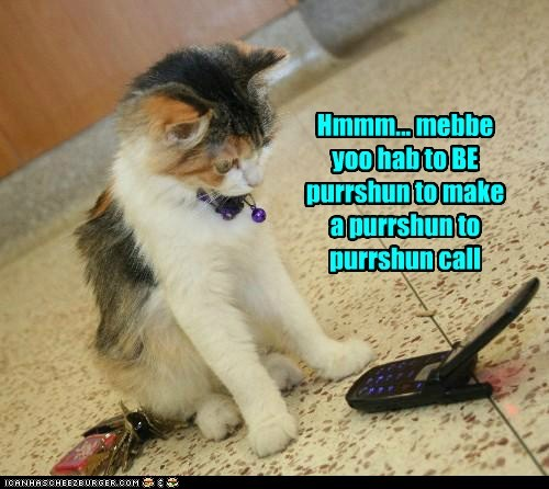 Hmmm... mebbe yoo hab to BE purrshun to make a purrshun to purrshun call